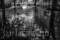silky rain 2019-2.jpg